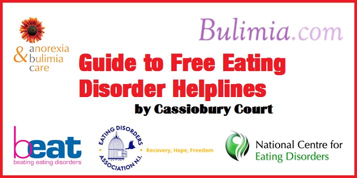 Guide to eating disorder